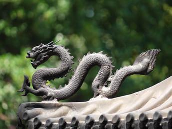 """中国环境进程的观察者——我与""""中外对话"""""""