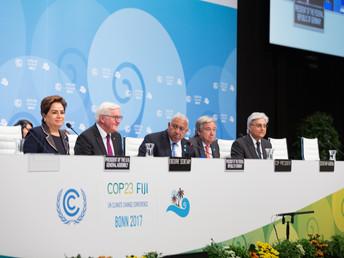 Bonn Voyage, Part 2: Inside COP Negotiations