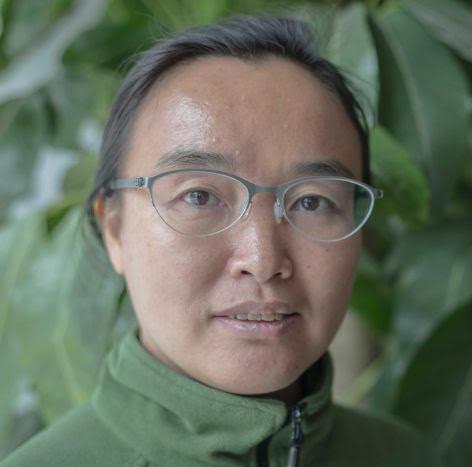 Xie Yan