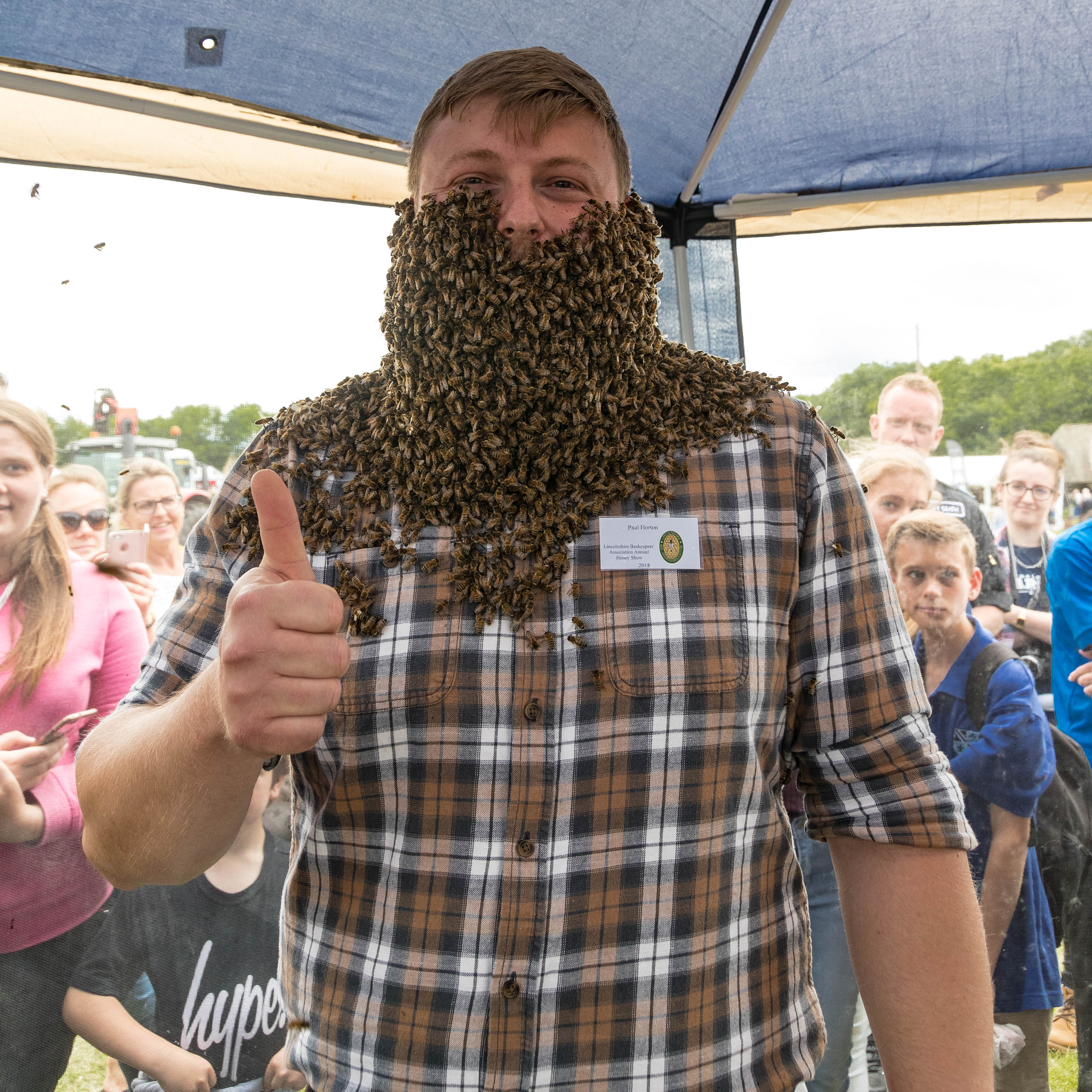 Bee Beard Lincolnshire Show 2018