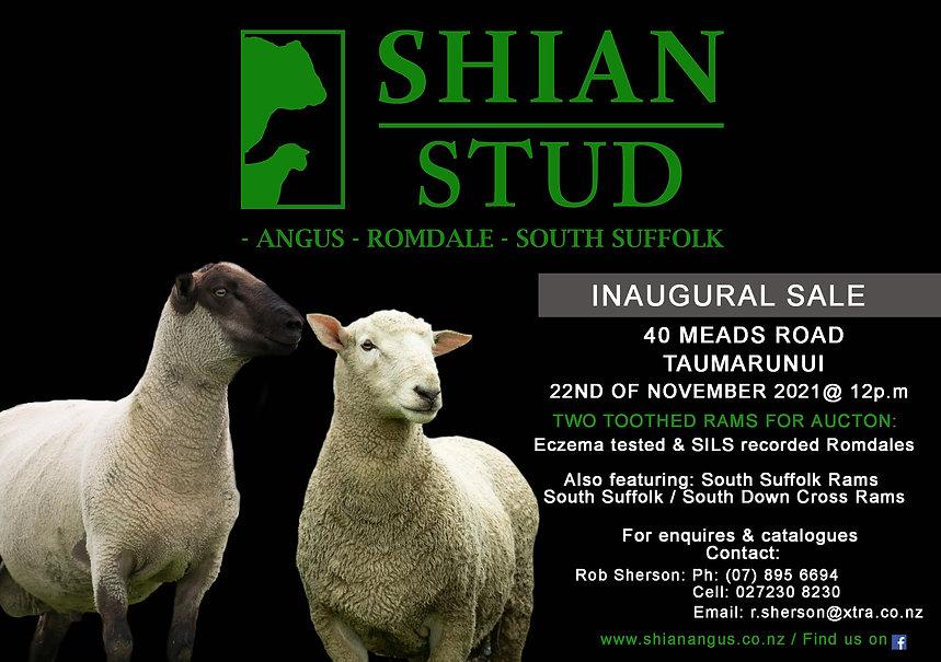 Ram Auction.jpg