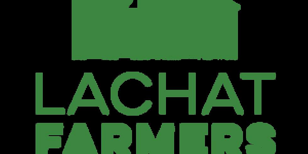 Lachat Farmer's Market - Weston (tentative)