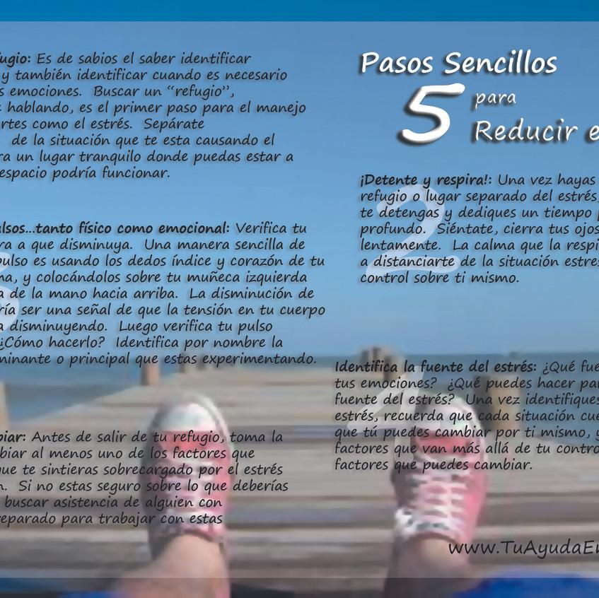 5 paso sencillos para reducir el estres.