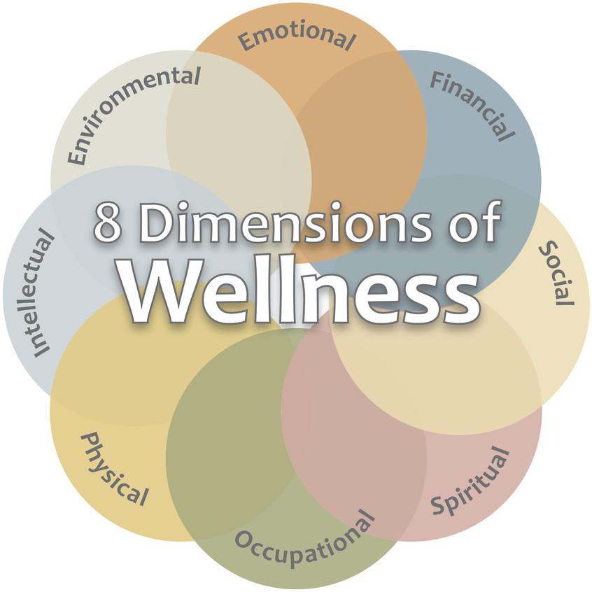 Wellness Circle_1 Vertex