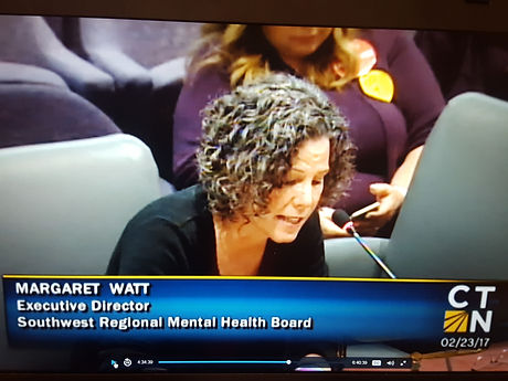 mwatt testifying 2017.jpg