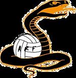 Les mambas logo.png