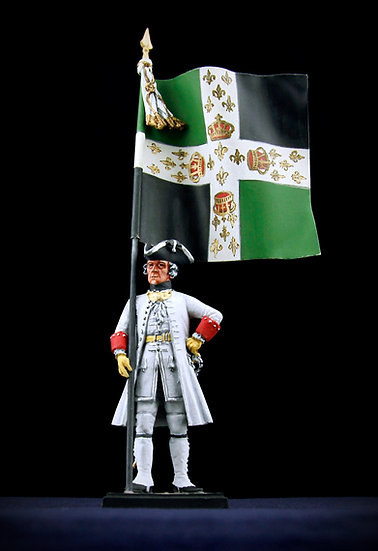 Queen's regiment standard bearer