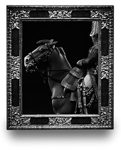 Napoleon's cavalery
