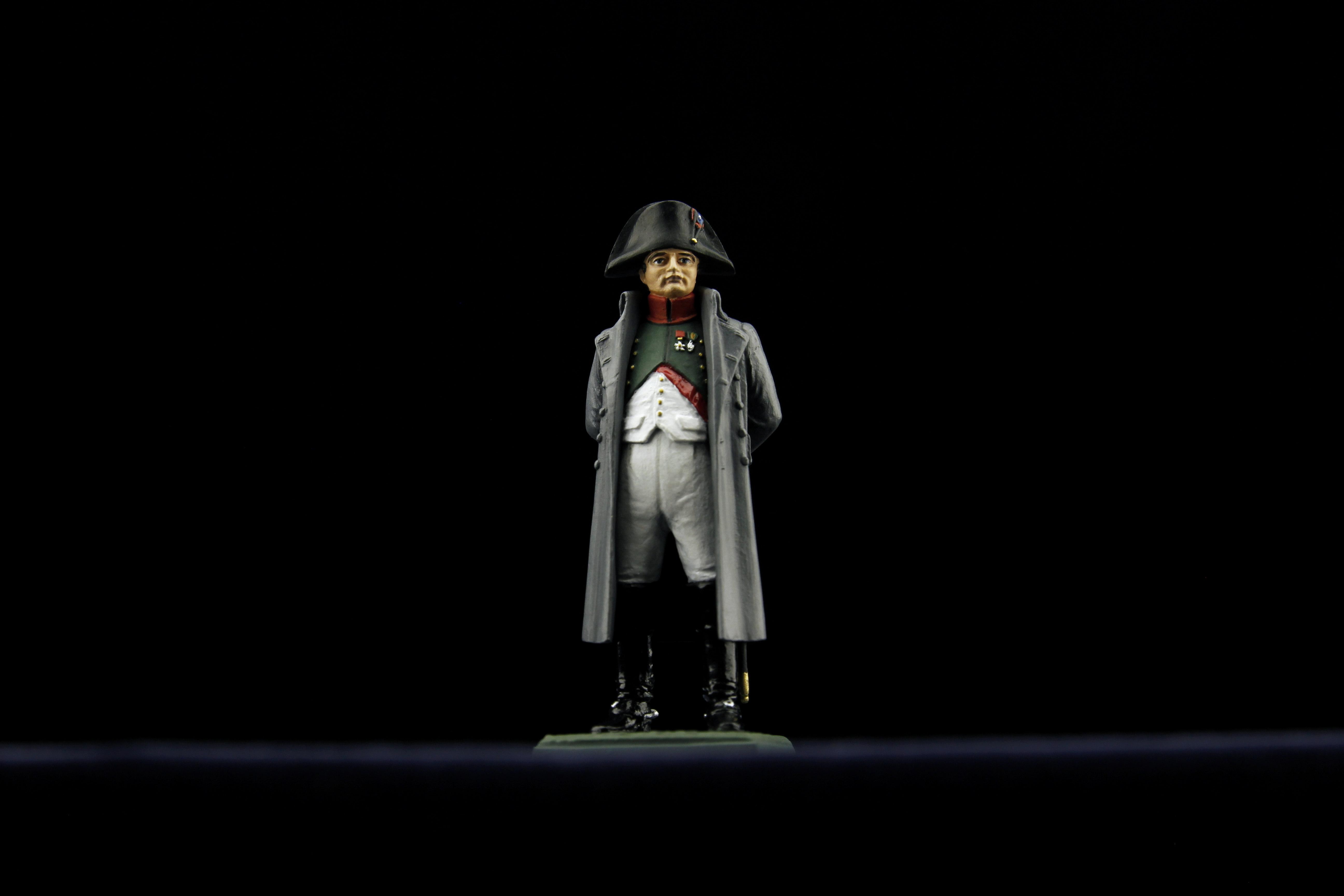 Napoleon vers. gris face