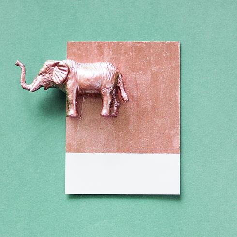 animal-decoration-elephant-1368496.jpg