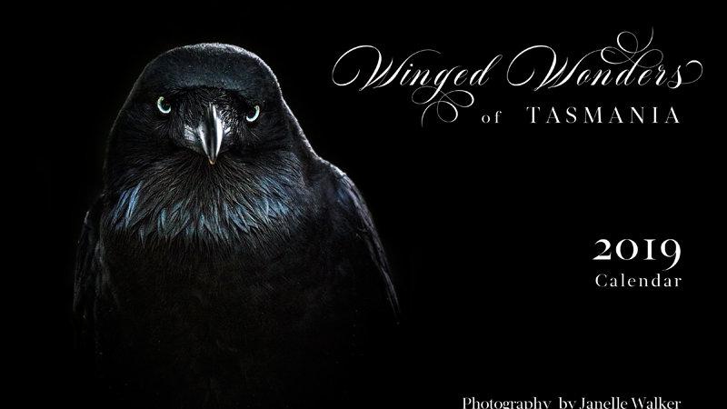 2019 Calendar - Winged Wonders of Tasmania