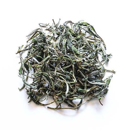 Green Tea, Huang Shan Mao Feng