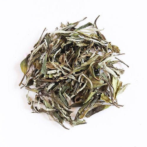 White Tea, Premium White Peony