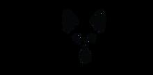 Logo-lang_edited.png