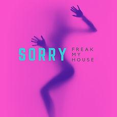 SORRY (Chicks Gone Wild Remix).jpg