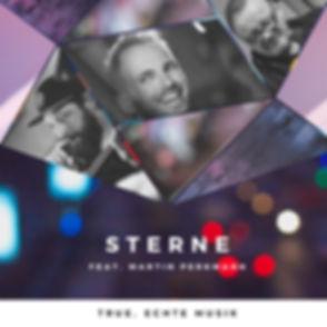 true Sterne Cover-Klein.jpg