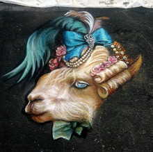 Llady Llama Starting Detail
