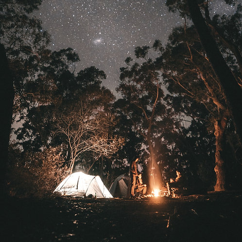 Wooded Non-Electric Campsites
