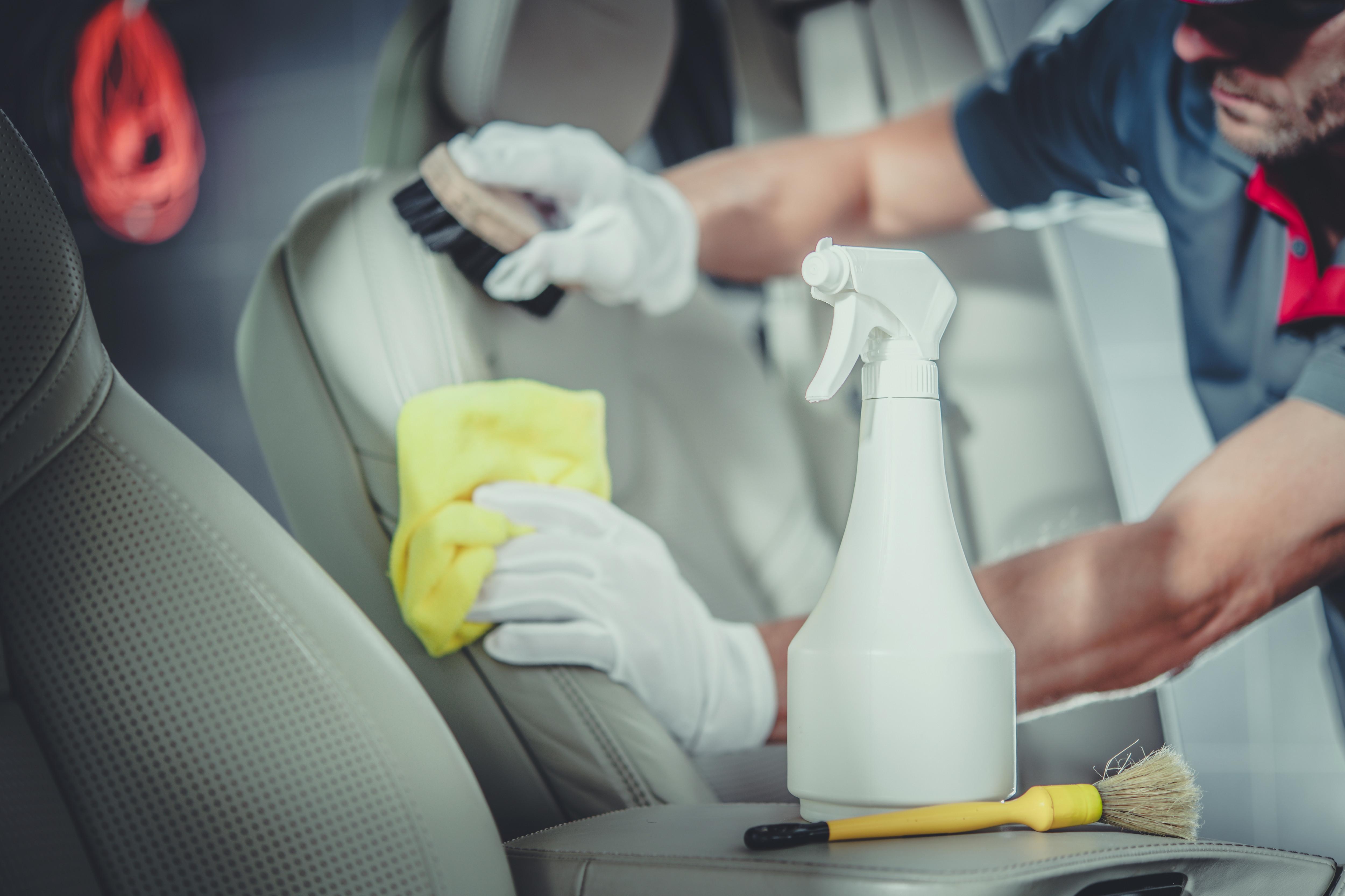 Steam Cleaning w/ Air Purifier Treatment