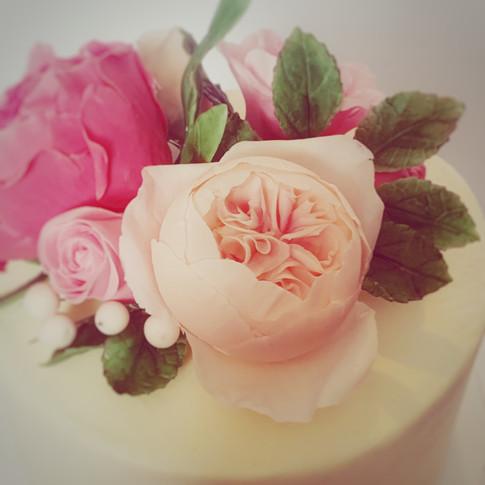Sugar rose details