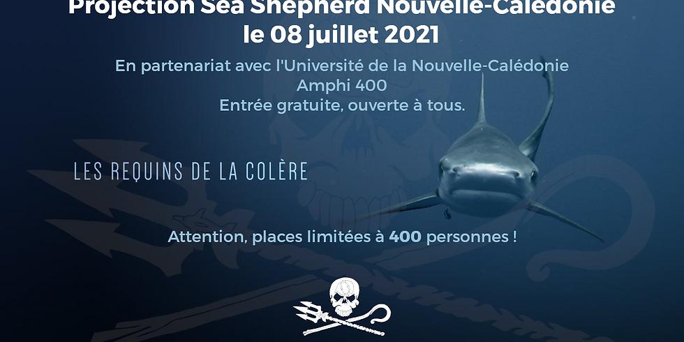 """Projection gratuite """"Les requins de la colère"""""""