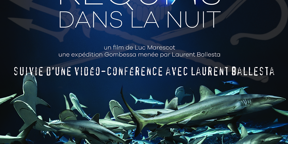 """Projection gratuite du film """" 700 requins dans la nuit"""""""