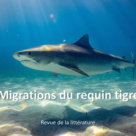 revue de littérature sur la migration du requin tigre