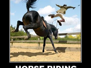 Yoga for Riders, Not Yoga on Horses