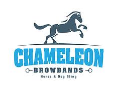 Chameleon Logo color.jpg