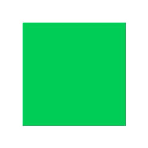 ROSCO 089 MOSS GREEN E-COLOUR FILTER