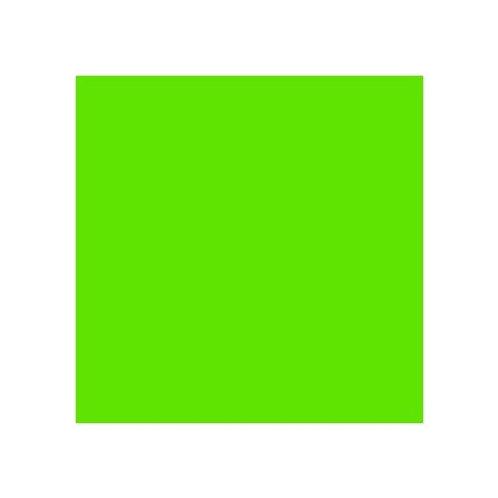 ROSCO 738 JAS GREEN E-COLOUR FILTER