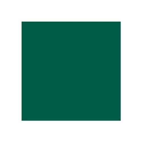 ROSCO 325 MALLARD GREEN E-COLOUR FILTER