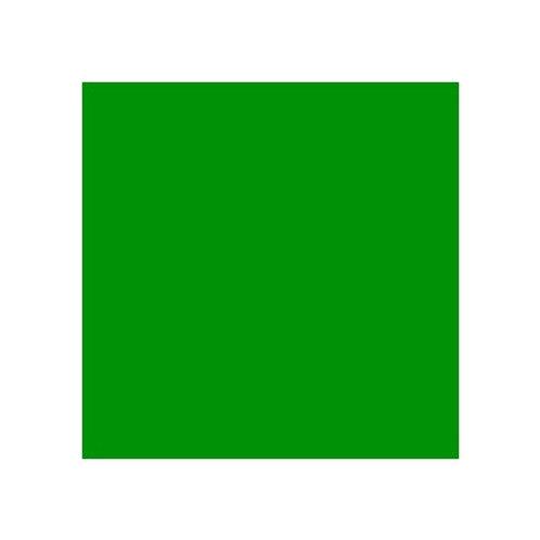 ROSCO 139 PRIMARY GREEN E-COLOUR FILTER