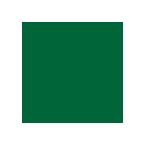 ROSCO 327 FOREST GREEN E-COLOUR FILTER