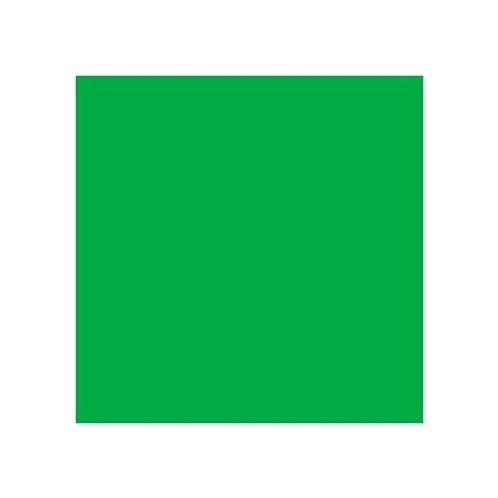 ROSCO 124 DARK GREEN E-COLOUR FILTER