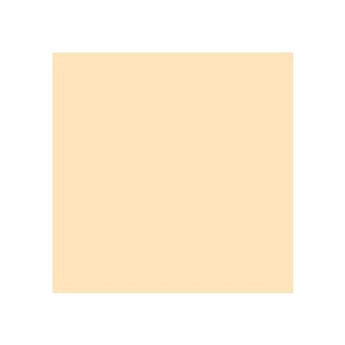 ROSCO 443 QUARTER CT STRAW E-COLOUR FILTER