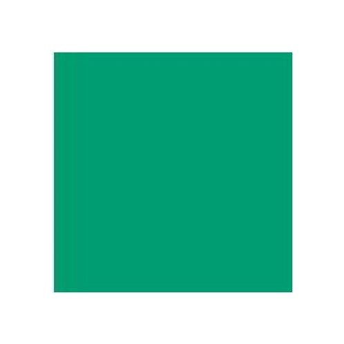 ROSCO 5454 OLYMPIA GREEN E-COLOUR FILTER