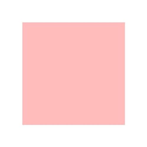 ROSCO 749 HANOVER ROSE E-COLOUR FILTER