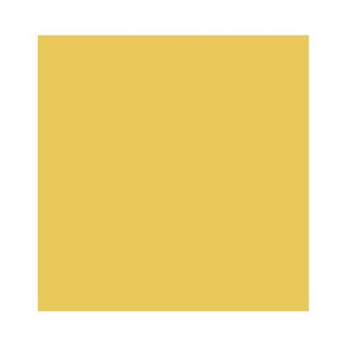 ROSCO 5336 AZTEC GOLD E-COLOUR FILTER