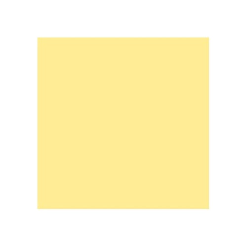 ROSCO 764 SUN COLOUR STRAW E-COLOUR FILTER