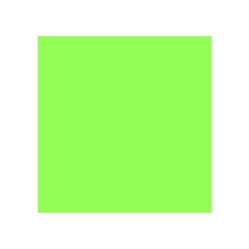 ROSCO 121 LEAF GREEN E-COLOUR FILTER