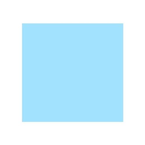 ROSCO 117 STEEL BLUE E-COLOUR FILTER