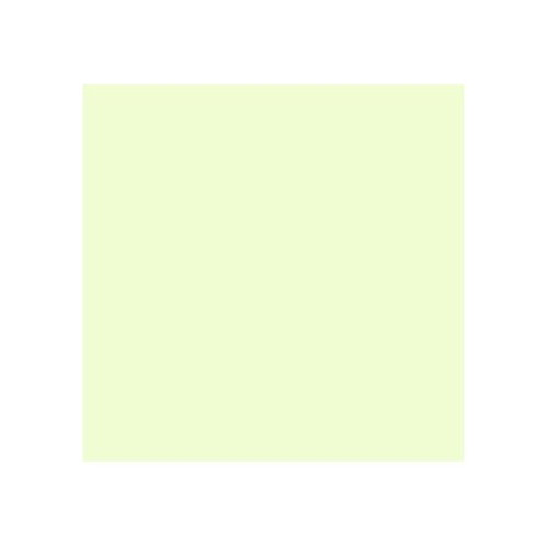 ROSCO 246 QUARTER PLUS GREEN E-COLOUR FILTER