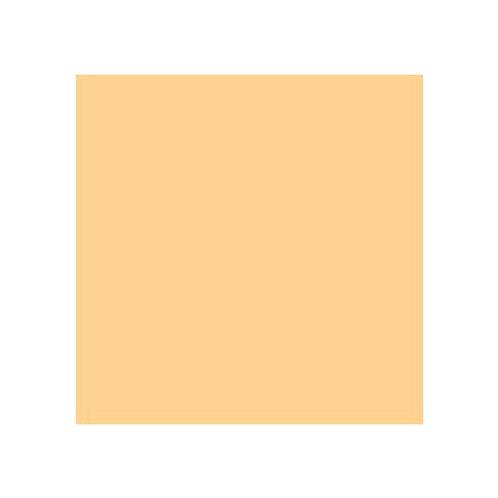 ROSCO 205 1/2 CT ORANGE E-COLOUR FILTER