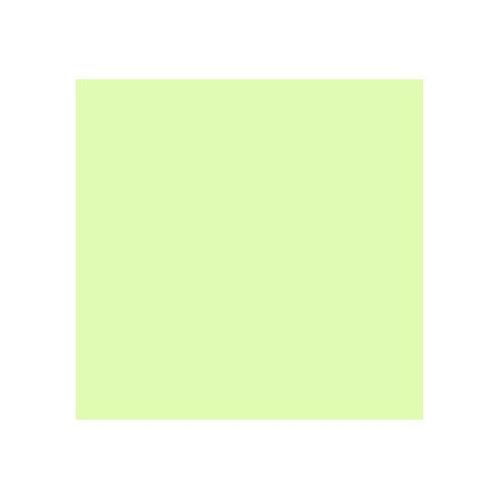 ROSCO 213 WHITE FLAME GREEN E-COLOUR FILTER