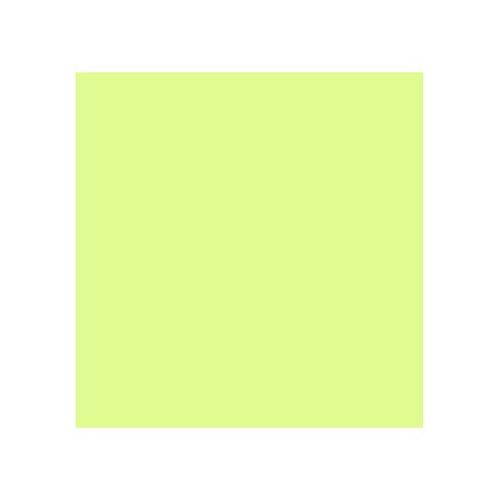 ROSCO 244 PLUS GREEN E-COLOUR FILTER