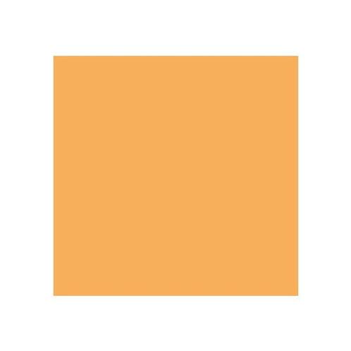 ROSCO 285 3/4 CT ORANGE E-COLOUR FILTER