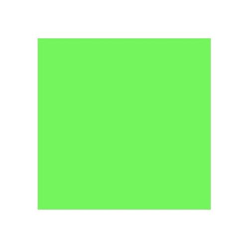 ROSCO 122 FERN GREEN E-COLOUR FILTER