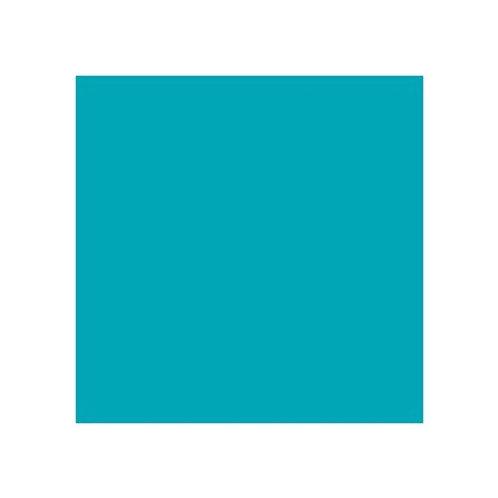 ROSCO 5463 PRUSSIAN GREEN E-COLOUR FILTER