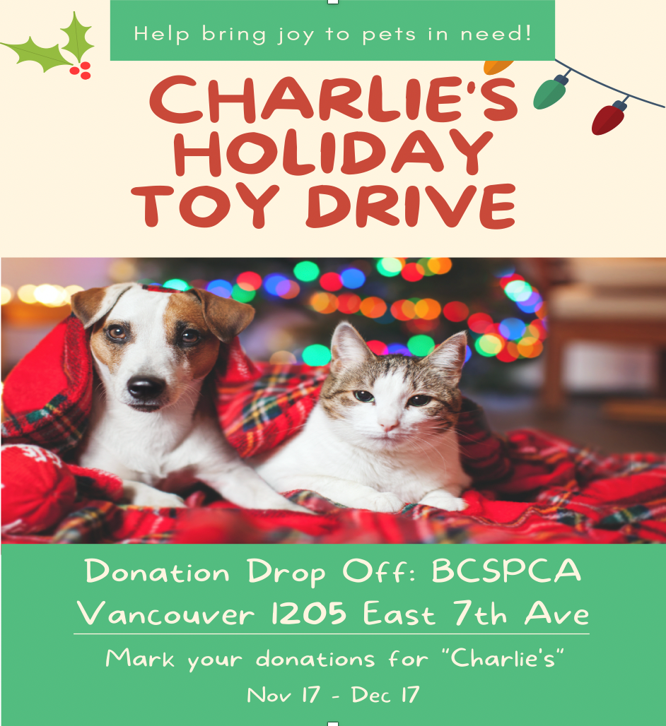 Poster for Charlie's Holiday Toy Drive
